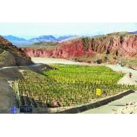 稀土矿区矿山地质环境恢复治理项目设计、施工总承包