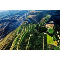 本钢徐家堡子铁矿采矿权价值评估报告招采公告