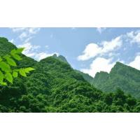 长江经济带废弃露天矿山生态修复原南王矿区整治监理