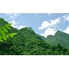 龙里县2020年历史遗留煤矿山复绿工程