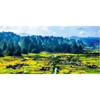 矿山地质环境保护与恢复治理方案